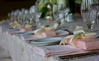 Event Photography – Bridal Shower 4