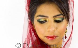 Indian Wedding Portraits - Nidhi 2