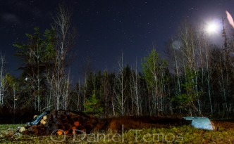 Night Photos - Moonlight Logs Boat