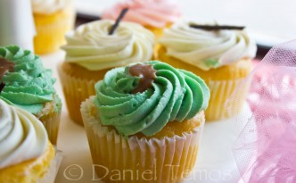 Food Photography - Dessert Cupcake 1